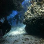 The best dive sites in Cozumel